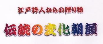 ★★★伝統の朝顔 ロゴ3.jpg
