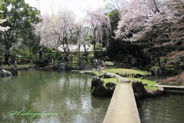 2.靖国神社2.JPG
