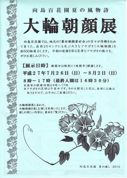 SS 大輪朝顔展チラシ.jpg