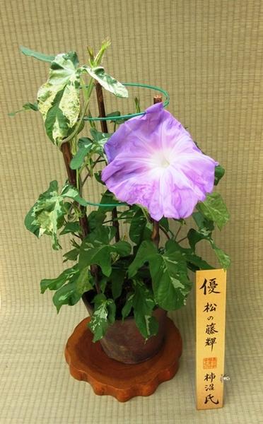 7.26 優 柿沼氏★1★.JPG